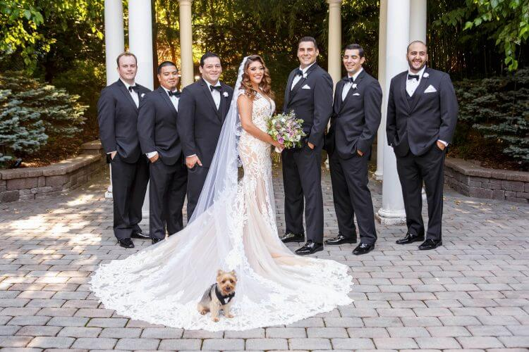 Dog as ring bearer at a New Jersey Wedding